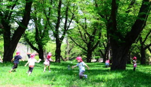 【長男】幼稚園でのケガが急に増えた理由が意外だった話。